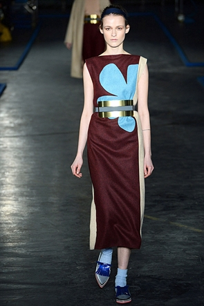 Roksanda Ilincic Autumn/Winter 2014